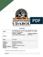 PROYECTO AUDITORIA INFORMATICA DE DESARROLLO DE PROYECTO.docx