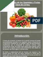 Clase 2 Clacificación de Los Vegetales. Tipos de Cortes