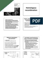 Homologous Recombination
