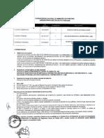 Convocatorias CAS 104 105 106