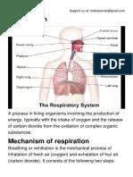 Respiration.pdf