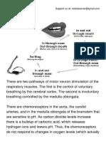Stimulation of Breathing.pdf