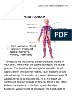 The Cardiovascular System .pdf