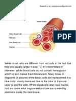 White Blood Cells (WBC).pdf