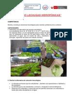 CULTIVANDO LECHUGAS HIDROPÓNICAS I.E.N°  148 -2017