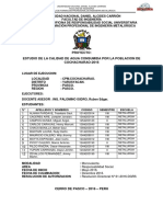 Informe Final Horizonte Metalurgico