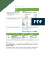 Formato para práctica de evaluación entre pares Rafael Morales Salazar