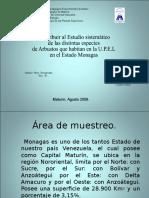 Bps  Plantas Arbustos de La Upel