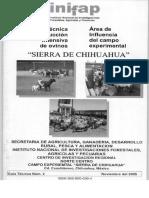 $RD8DVVS.pdf