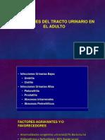 Infecciones del tracto urinario en el adulto.pdf
