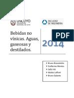 Bebidas No Vinicas- Aguas- Gaseosas y Destilados - Informe