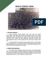 16-Budidaya Ternak Lebah