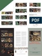Serpientes de la Orinoquía colombiana.pdf