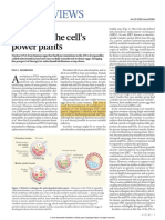 Nature Biomedicine- Replacing the Cell's Power Plants