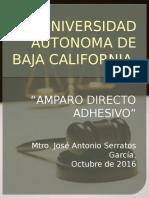 AMPARO adhesivo.pptx