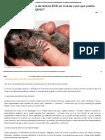 ¿Cómo Usar Las Pruebas de Lectura ECE en El Aula o Por Qué Podría Desaparecer El Mono Pigmeo_ _ Www.educaccionperu