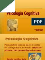 Psicologia cognitiva final