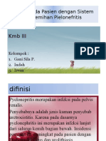 docslide.pl_ppt-pielonefritis-578b4234563c5.pptx