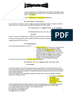 Catégorisation Sociale.pdf