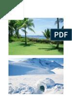 tropical vs  polar