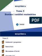 T5-Enzims