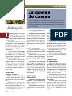 quema de campo.pdf