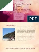 Analisis Potensi Wilayah & Daerah JMBER
