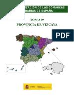 Caracterizacion Comarcas Vizcaya