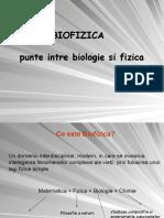 BioFizica