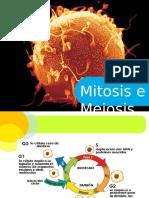 Mitosis e Meiosis (1)