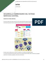 Desarrollo Embrionario Del Sistema Nervioso Central