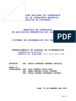 Termodinámica de Plantas de Cogeneración v01.doc