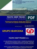 01 Pacific Deep Frozen
