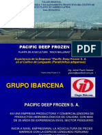 01 Pacific Deep Frozen