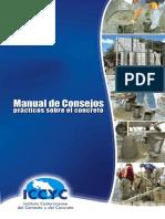 Manual Consejos ICCYC 2009.pdf