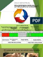 Ciclo Menstrual y sus caracteristicas.pptx
