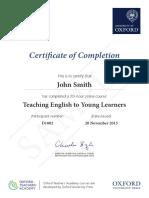 OTA Certifcate Sample