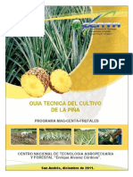 guiatecnicapina2011-140209225929-phpapp01.pdf