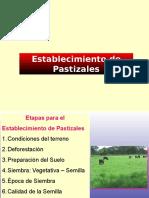 Establecimiento de Pastizales 1
