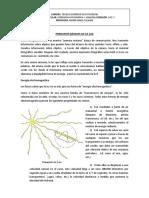 Principios Básicos de La Luz - Imágenes Estenopeicas - Objetivo Positivo Simple