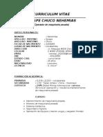 curriculum para empresa.docx