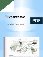 CARACTERISTICA ECOSISTEMA.pptx