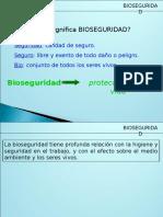 Bioseguridad 2010 2