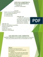 Marco legal medioambiental.pptx