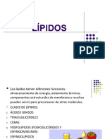 Lipidos Clasificacion y Formulas