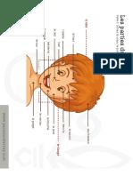 Les parties du corps .pdf