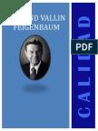 Armand v Feigenbaum