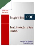 PECONOMIA 2010-11 T01.pdf