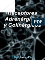 receptores androgenicos