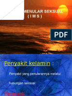 Ims (Repro, Pskm)